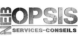 NebOpsis Services-Conseils